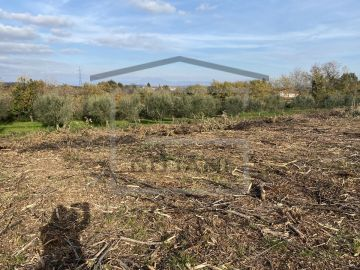 Poljoprivredno zemljište, Prodaja, Barban, Melnica